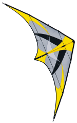 Competitionkites