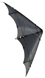Wilde Hilde by Space Kites